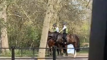 Couple Caught 'Making Love' In St James's Park Yards